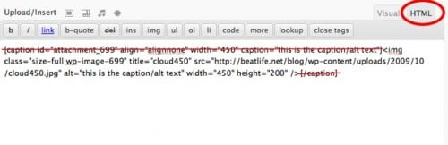 How To Get Rid Of Captions In WordPress