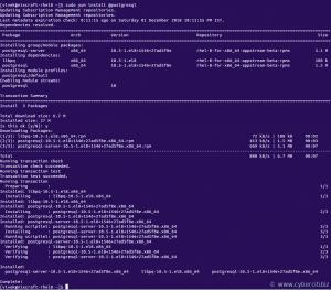 Install and setup PostgreSQL on RHEL 8