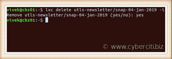 Linux delete the LXD snapshot using lxc command