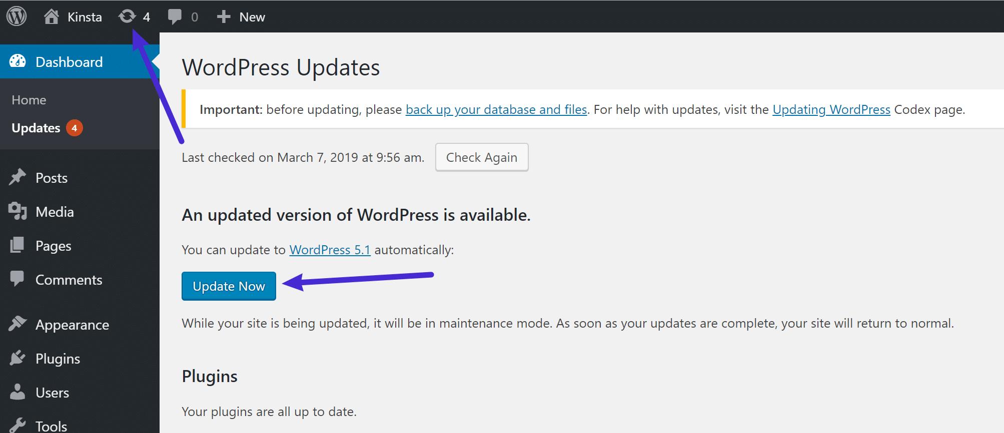 How to update to WordPress 5.1