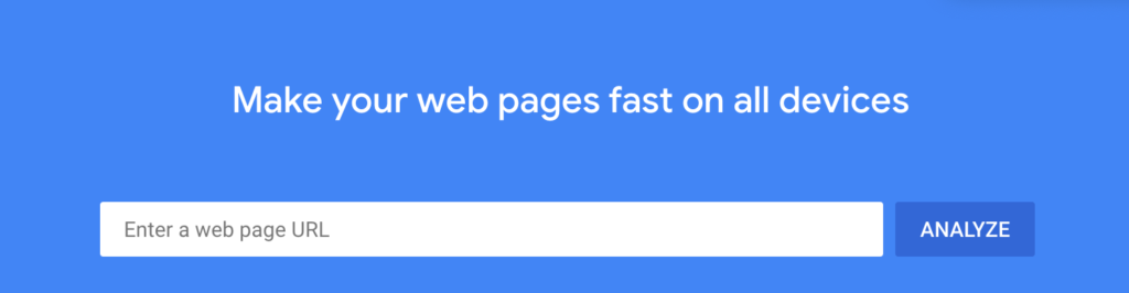The Google PageSpeed Insights tool.