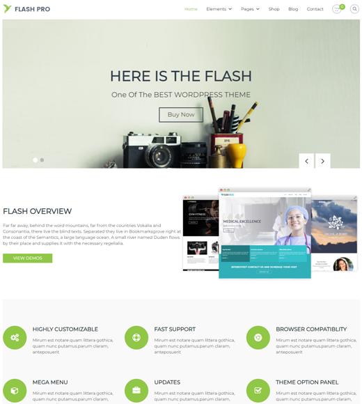 Flash Theme Demo Page
