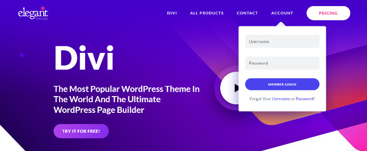 divi page builder