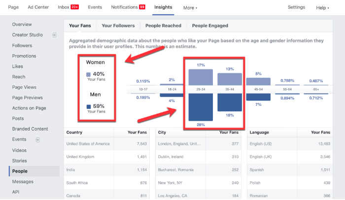 Facebook page insights demographics